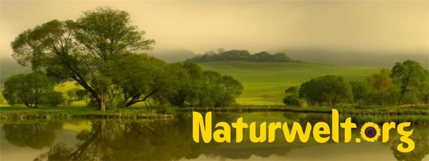 zur Naturweltseite