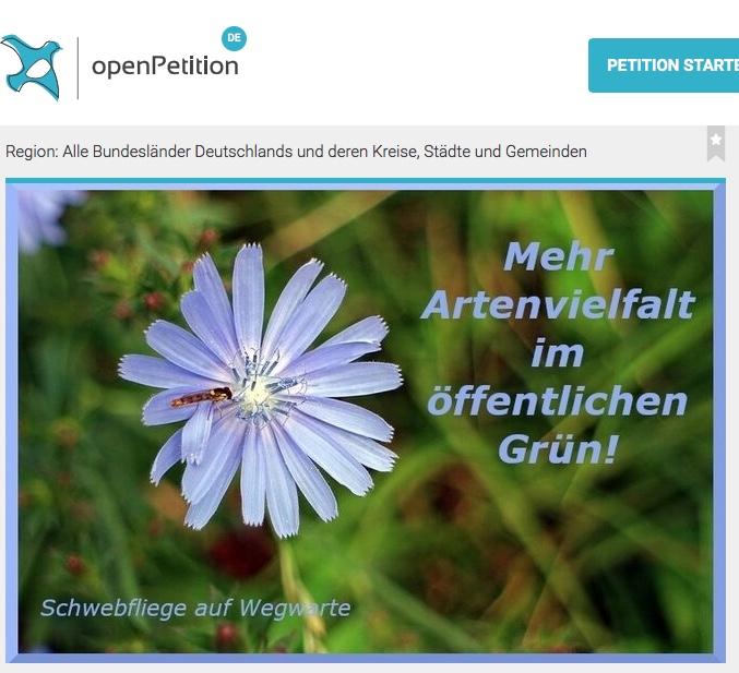 """Read more about the article Petition: """"Mehr Artenvielfalt im öffentlichen Grün"""""""